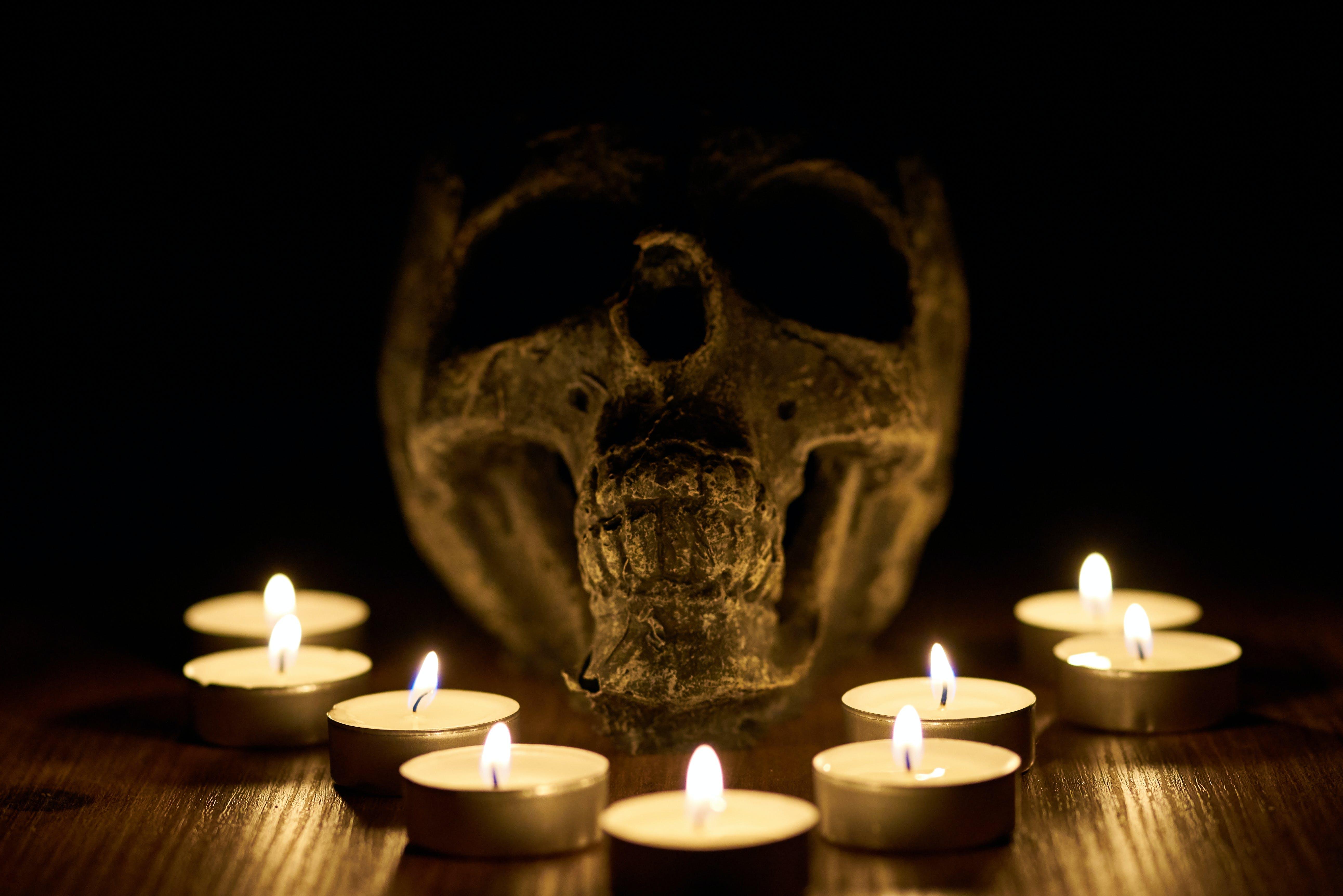 Free stock photo of halloween, horror, lights, nights