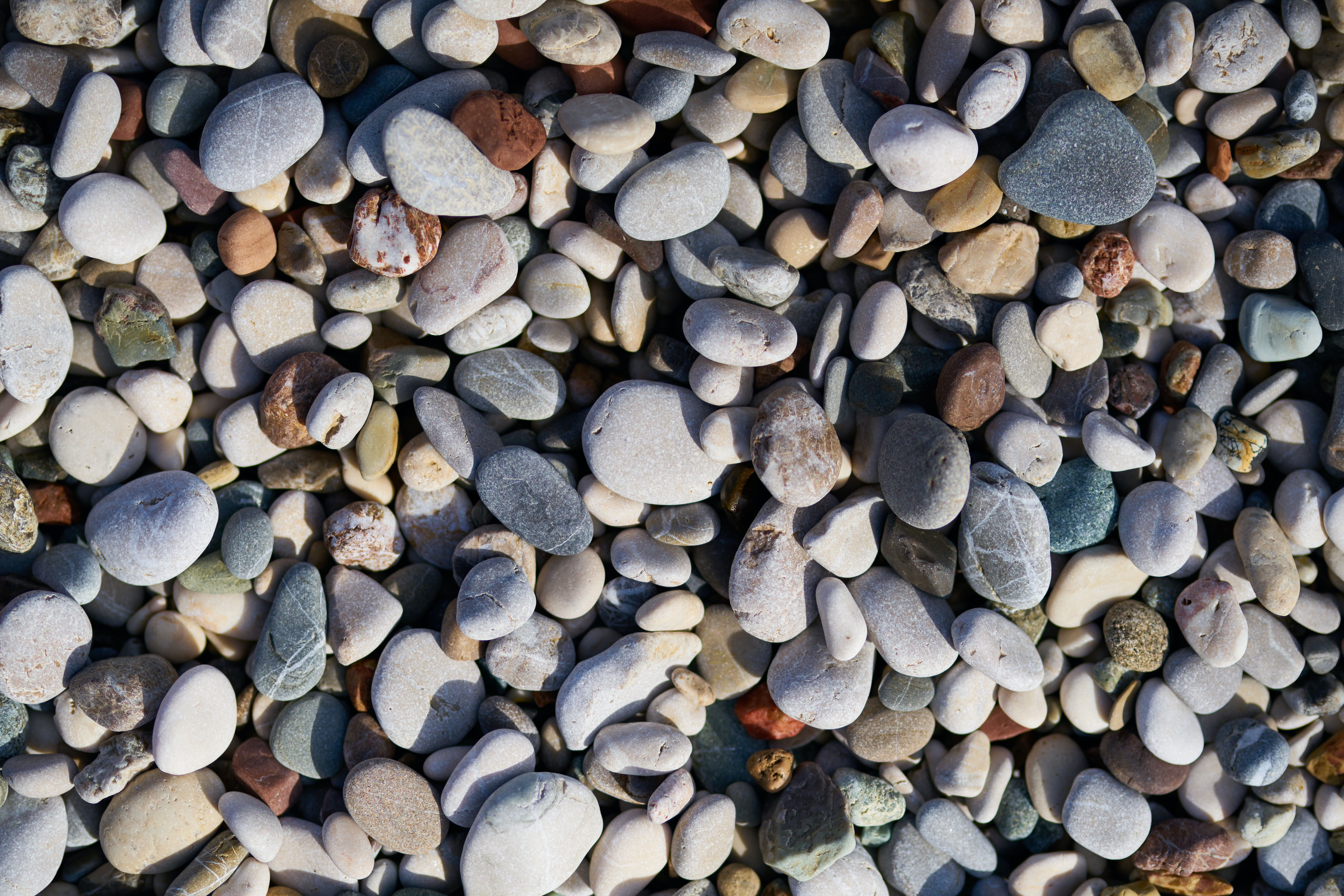 Free stock photo of abstract background, background, beach, closeup