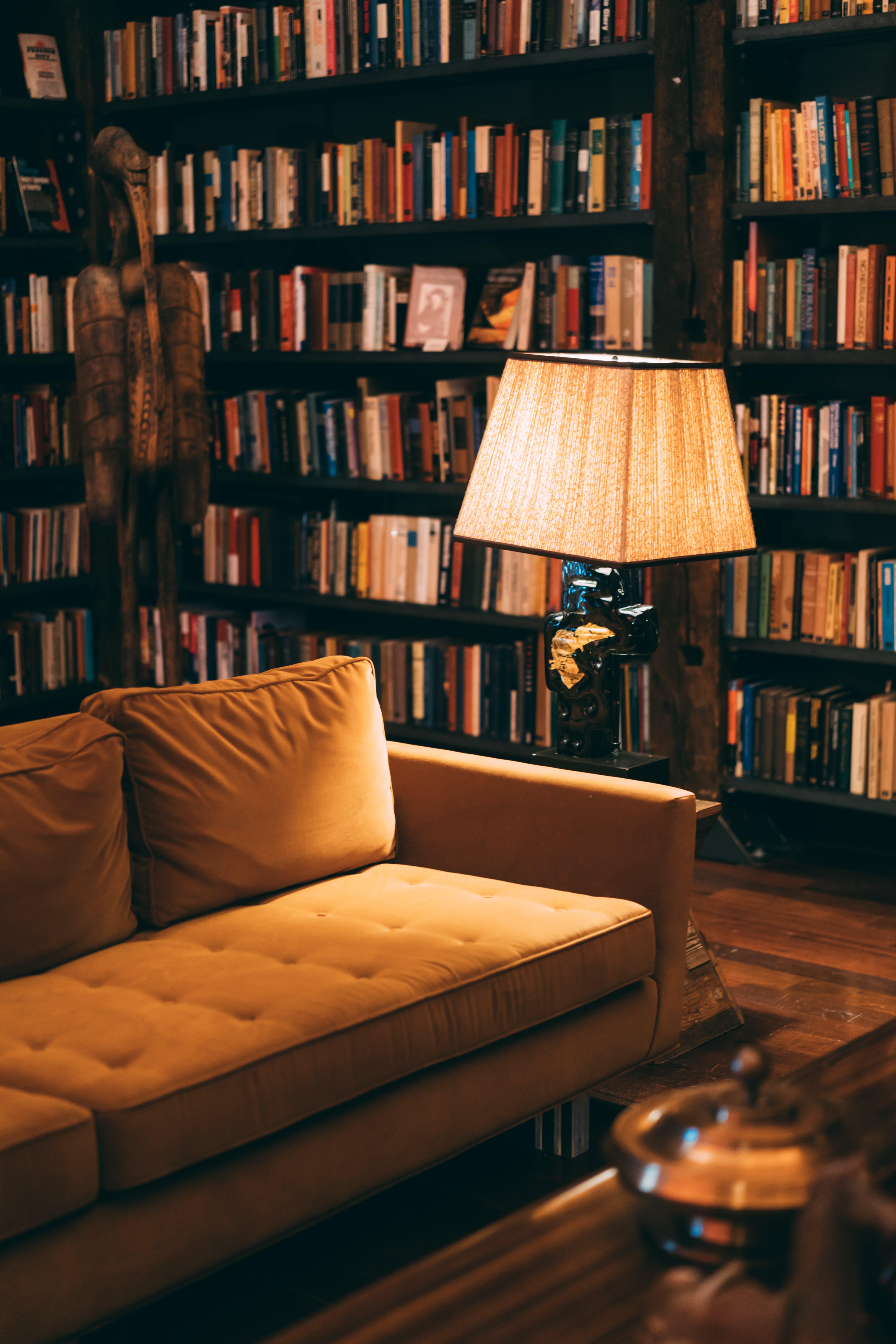 Základová fotografie zdarma na téma gauč, knihovna, knihy, knižní vazba