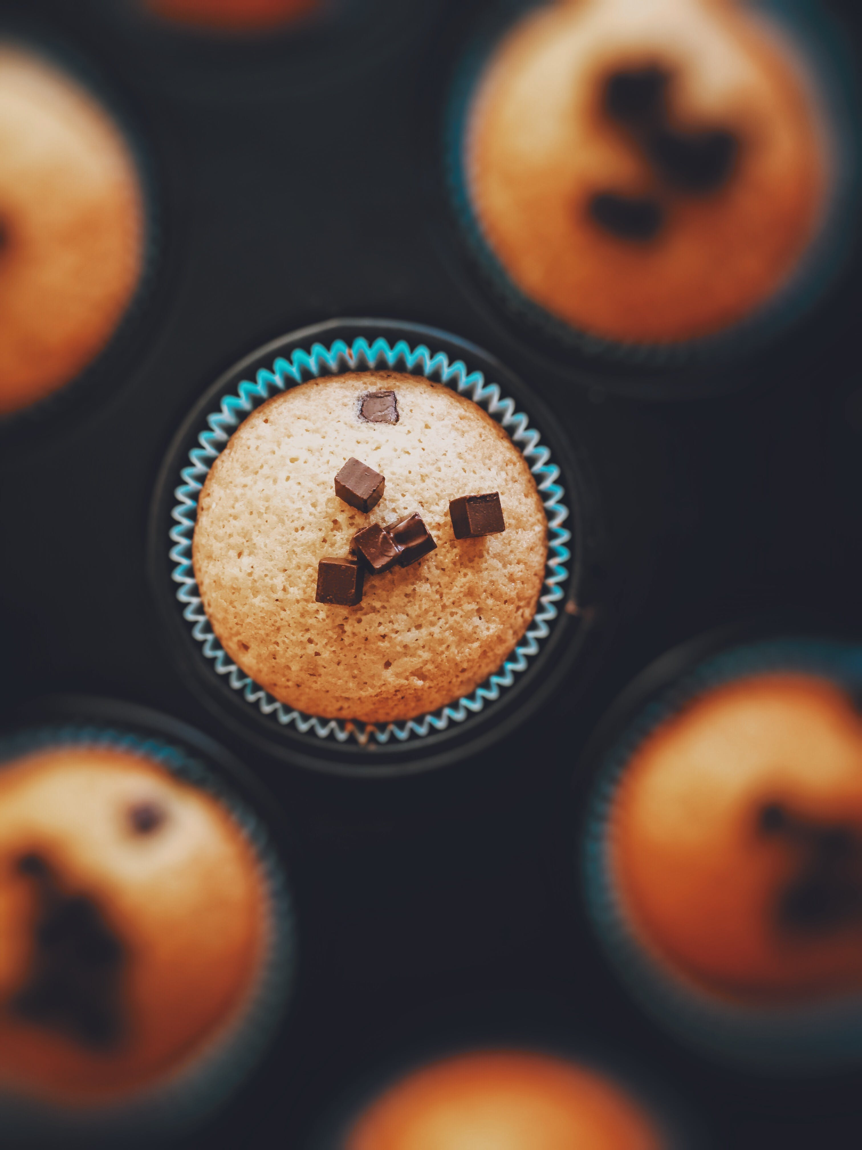 Cupcake With Chocolate Cubes