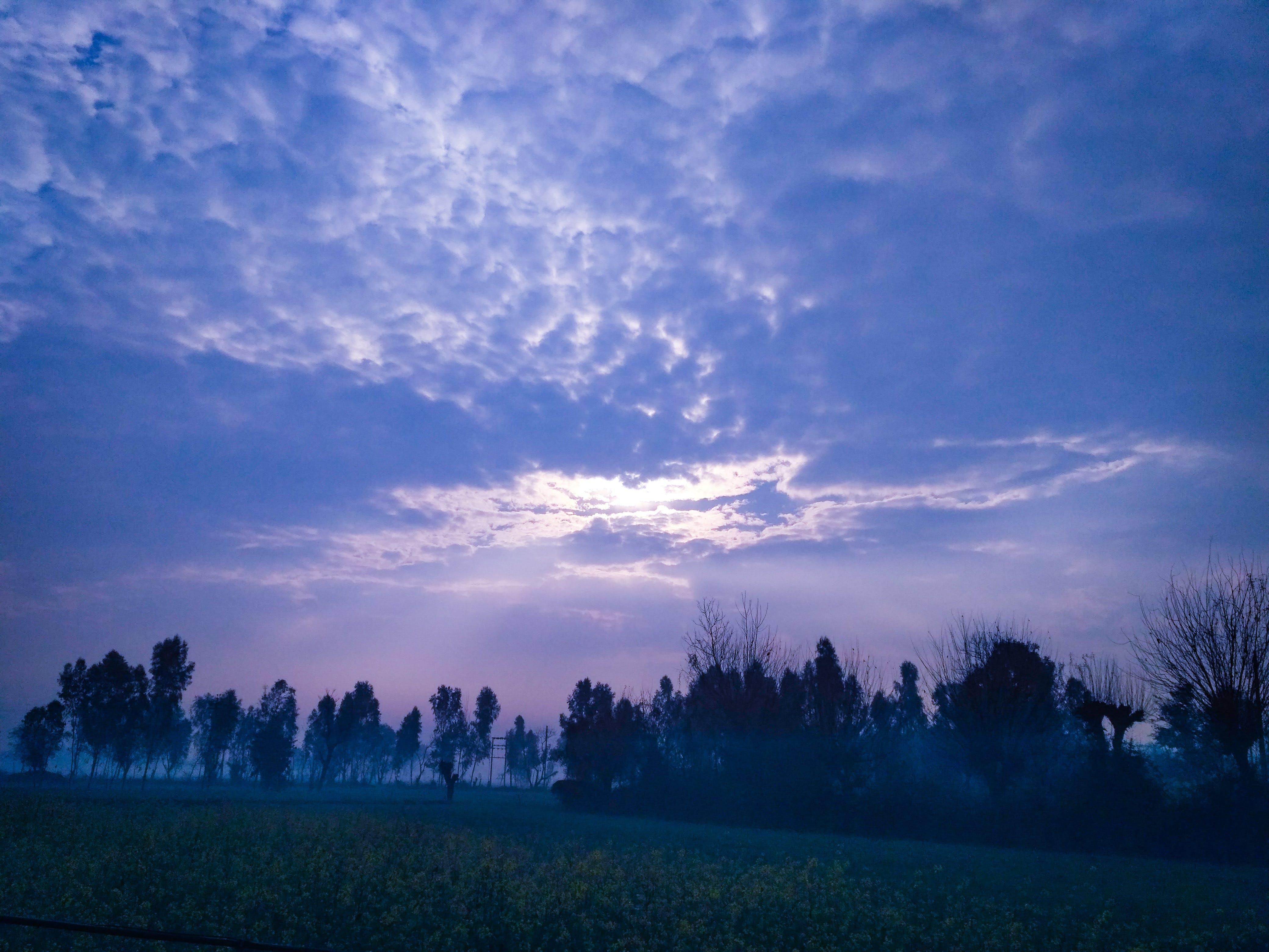 Photos gratuites de fond d'écran nature, fond de nature, nature, photo de nature