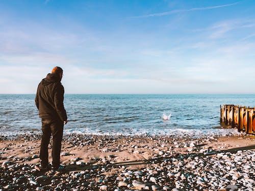 Ilmainen kuvapankkikuva tunnisteilla henkilö, hiekkaranta, merenranta, meri