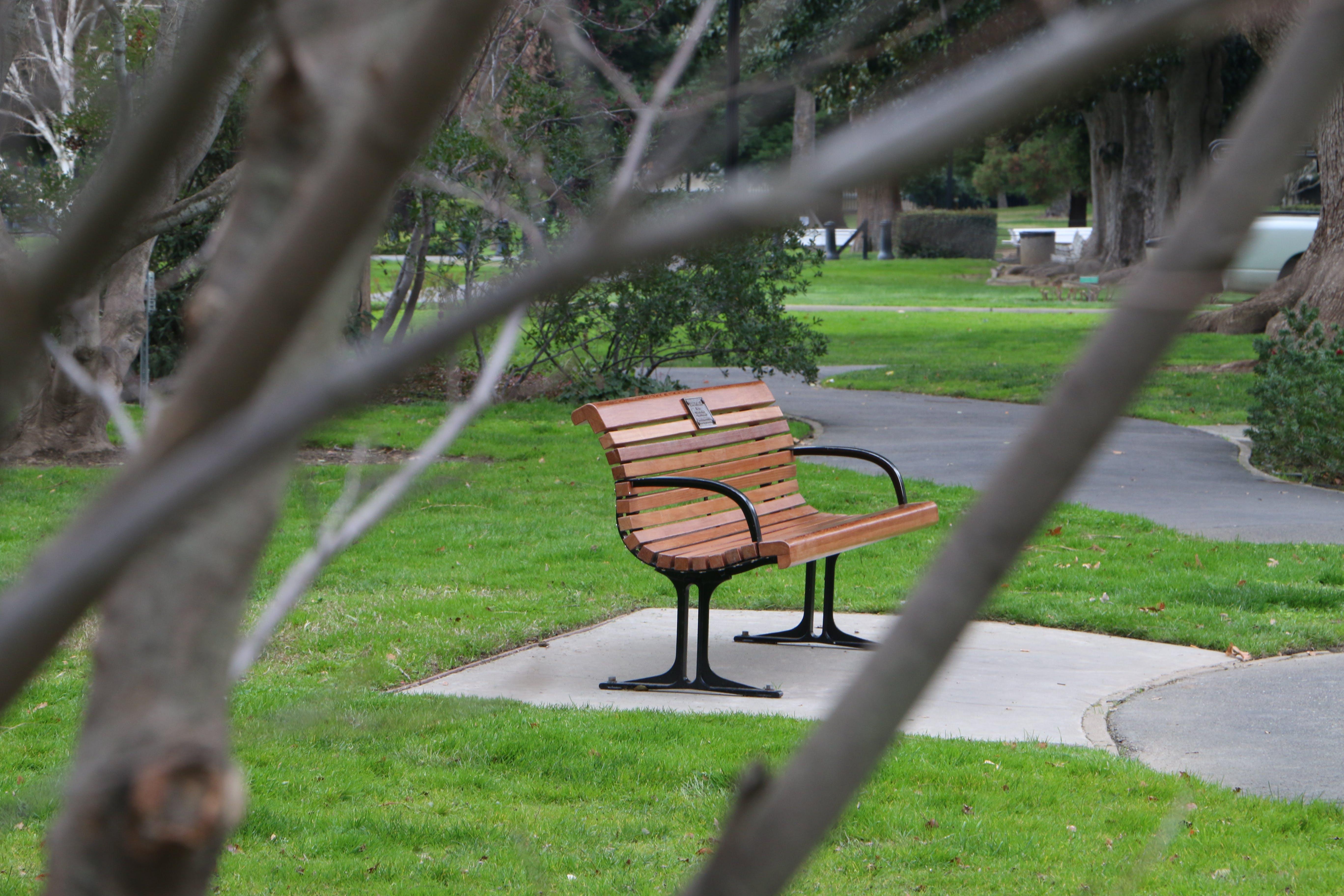 Free stock photo of bench, lonely, park, sacramento
