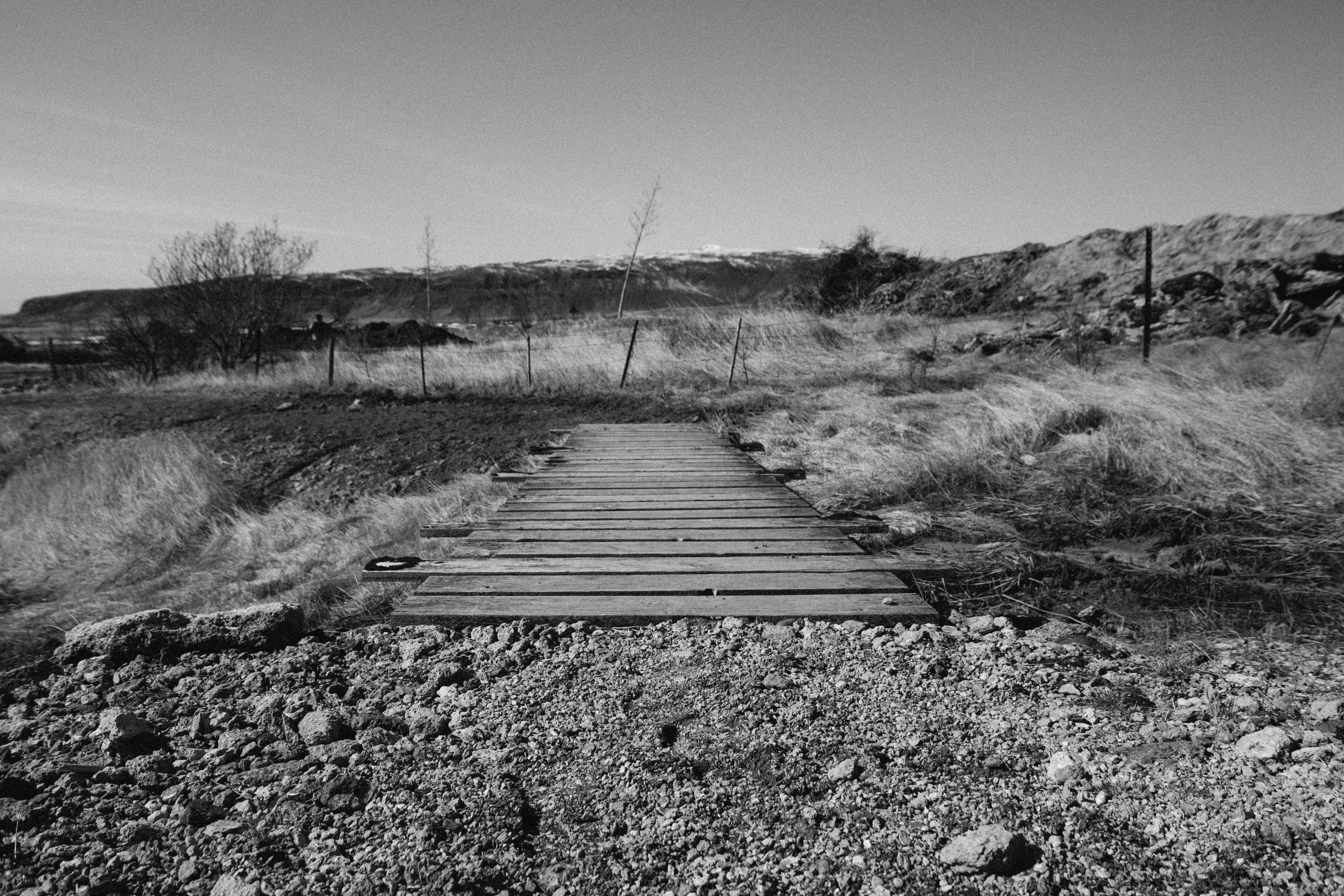 Grayscale Photography of Brown Wooden Bridge