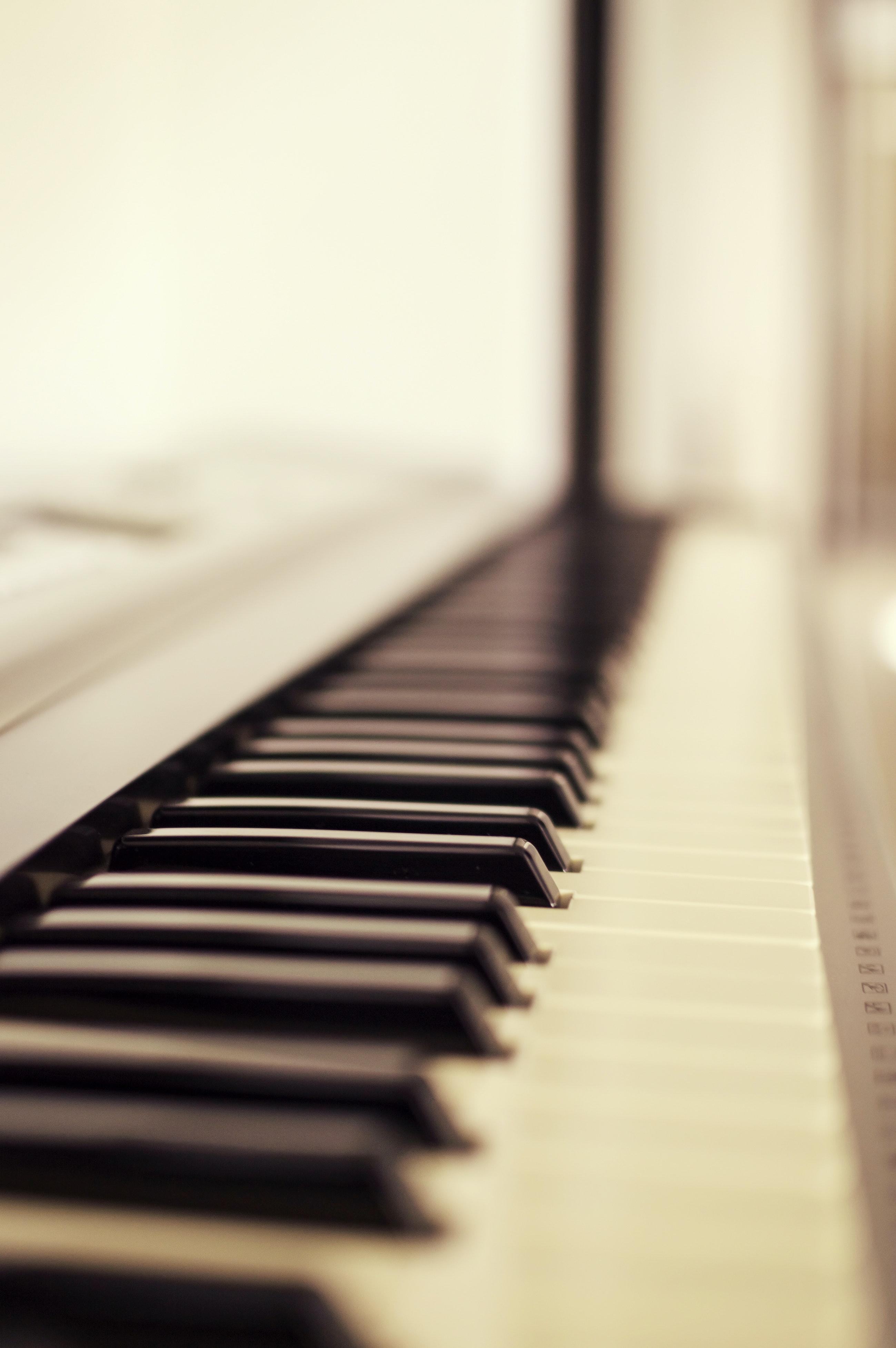 Macro Photo Of Piano Keys Free Stock Photo Hd wallpaper piano keys macro musical