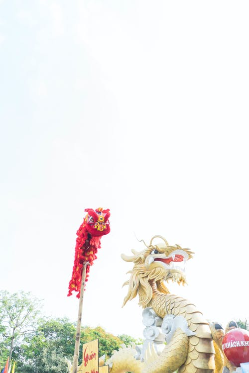 Darmowe zdjęcie z galerii z smok