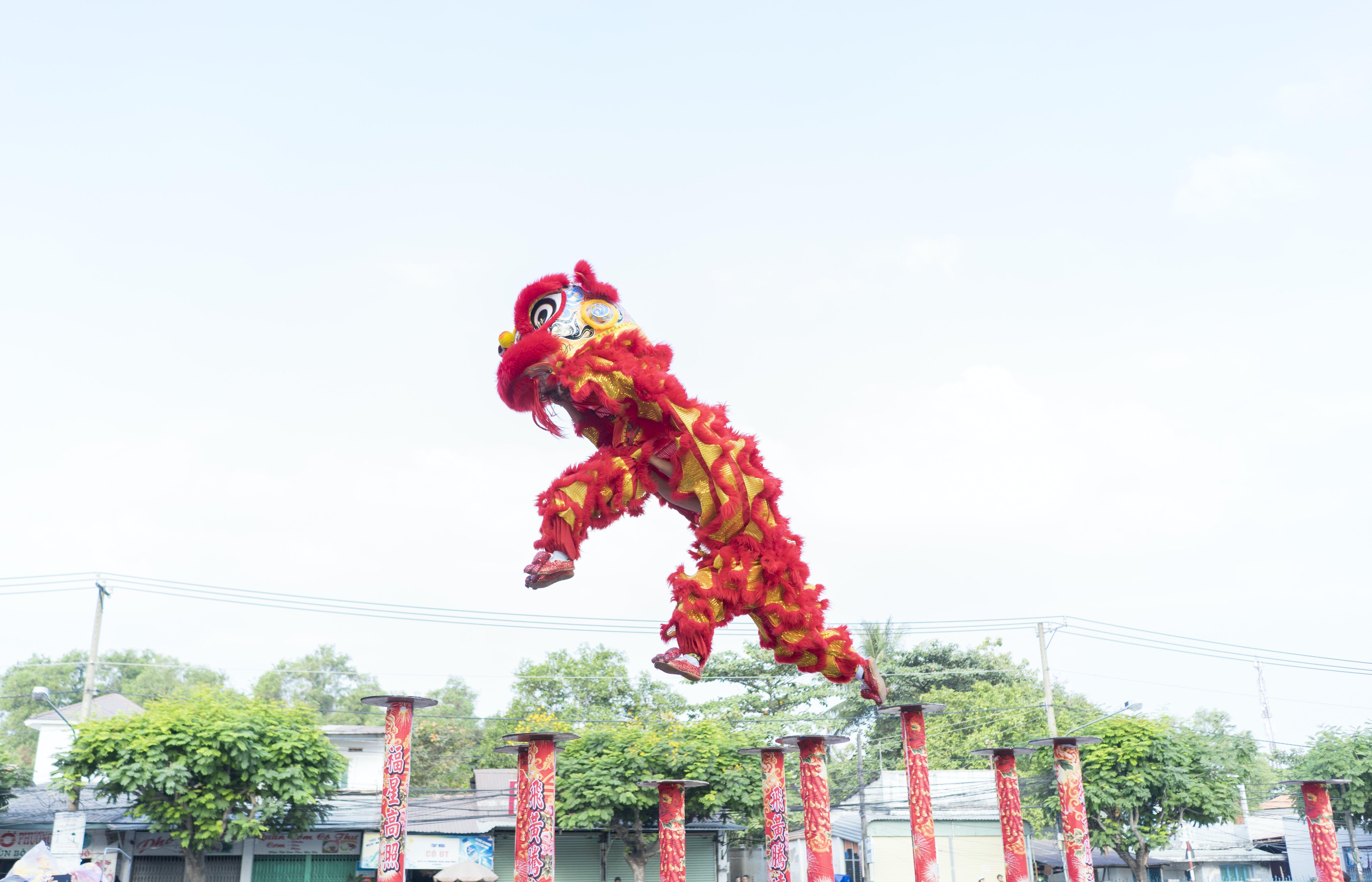 Free stock photo of dragon