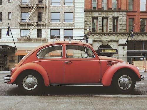 vw 甲蟲, 交通系統, 公開表演, 城市摄影 的 免费素材照片