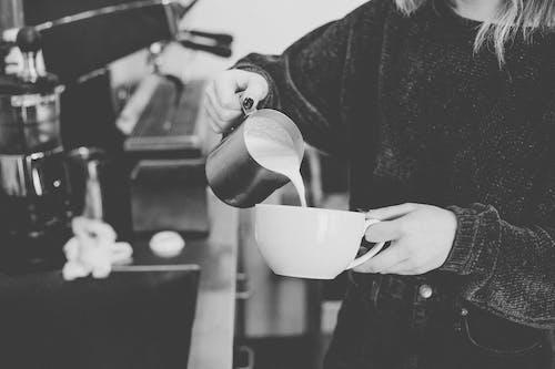 Free stock photo of barista, coffee, coffee shop