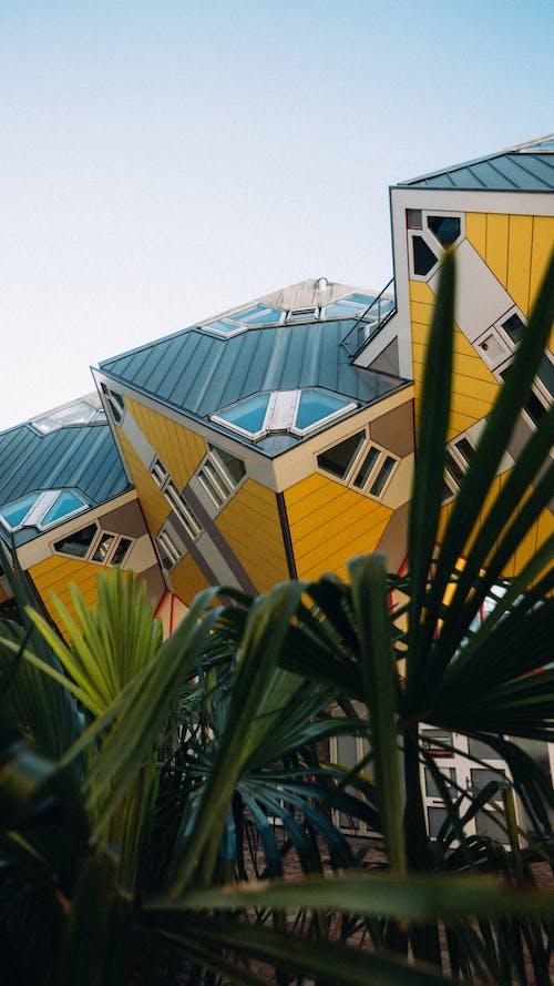 Foto d'estoc gratuïta de arquitectura, paisatge urbà, Rotterdam, urbà