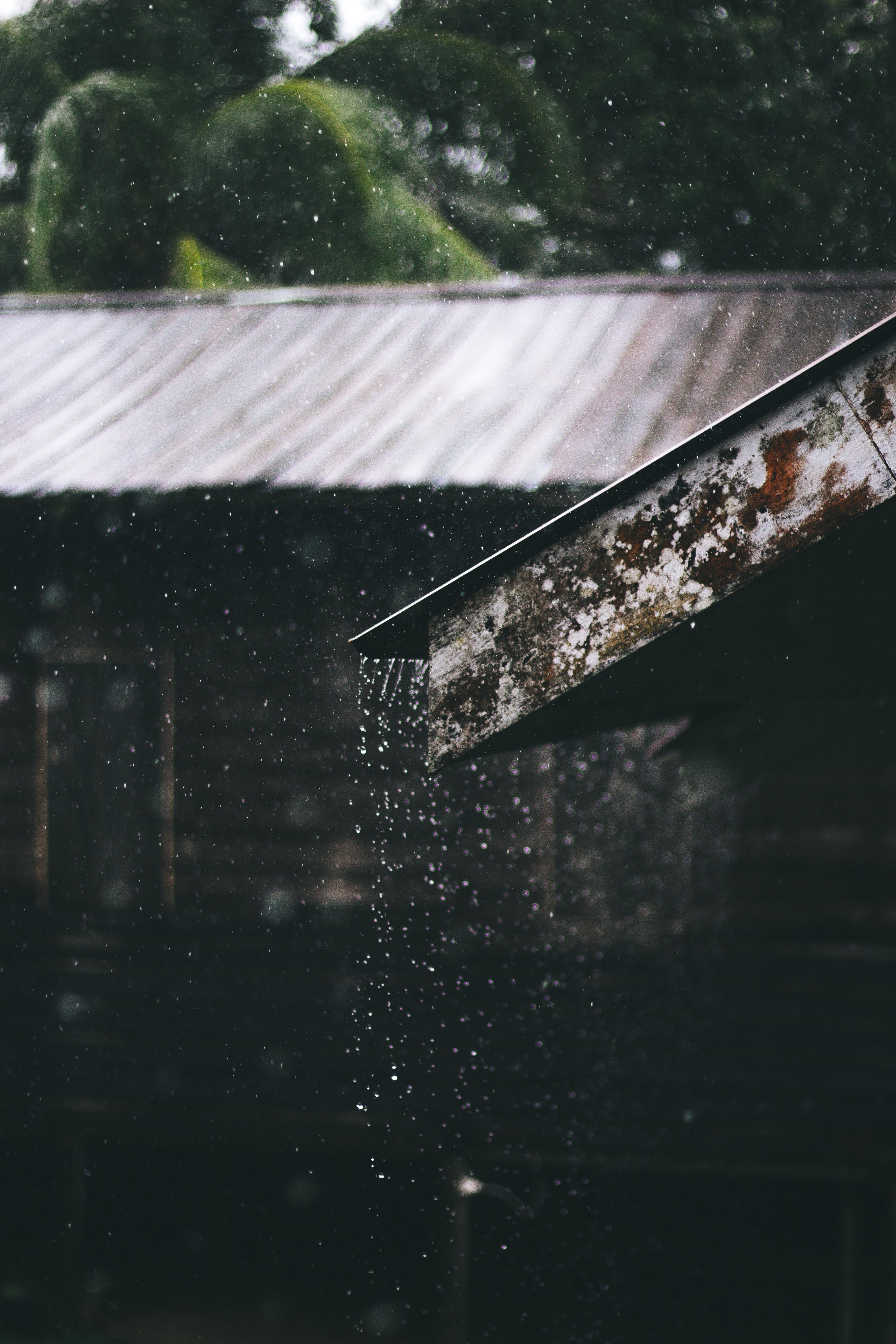 Selective Focus Photography of Corrugated Metal Sheet of House during Rainy Daytime