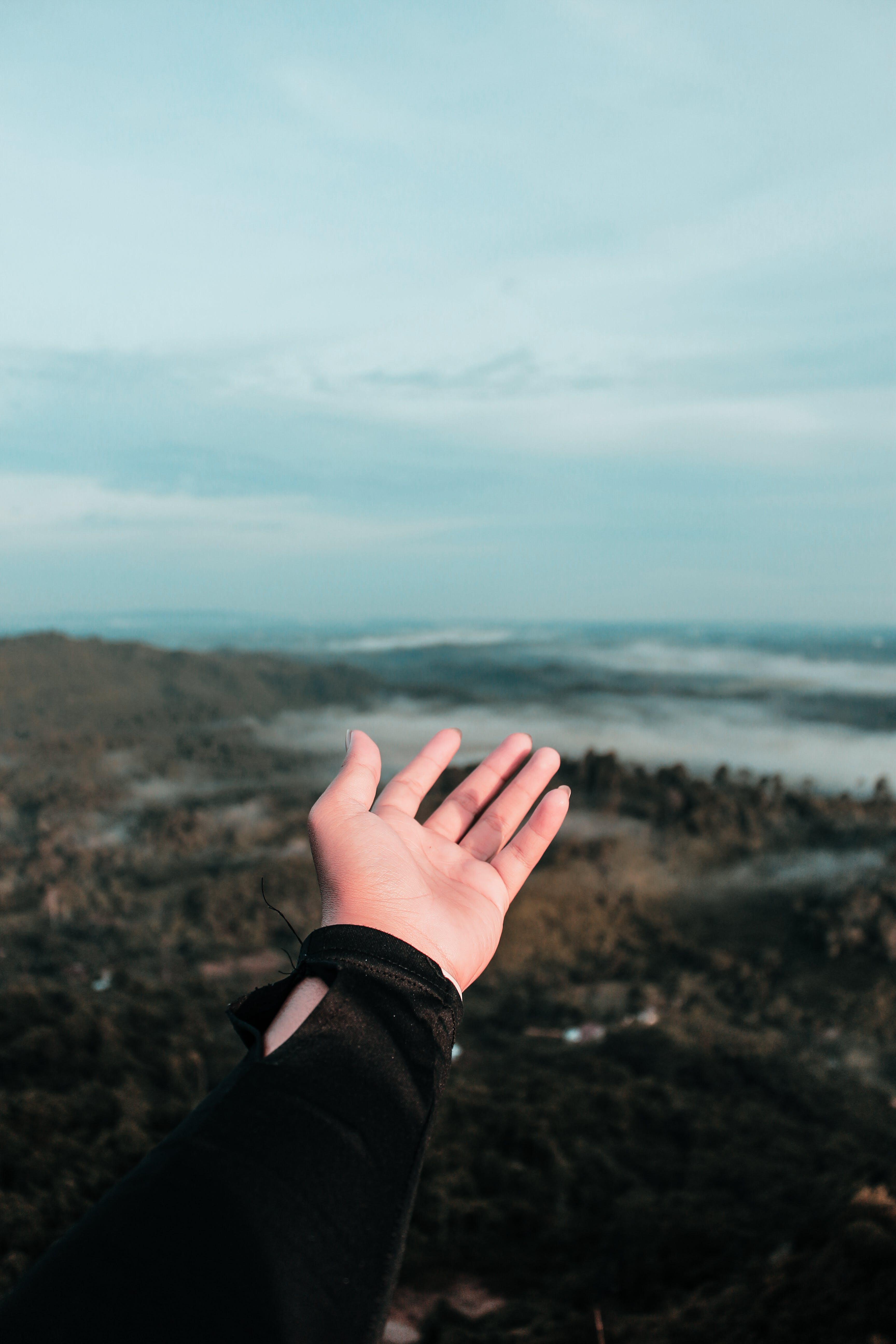 Man's Left Hand