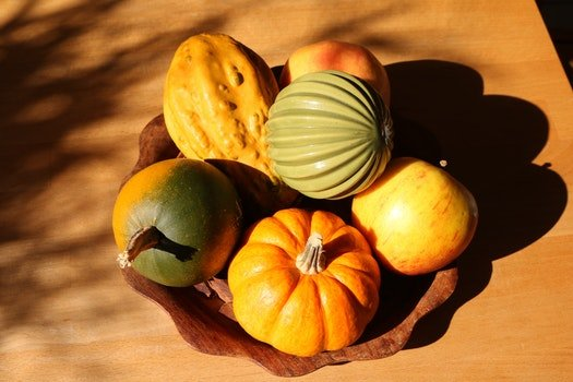Free stock photo of apple, autumn, squash, autumn colours