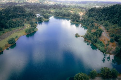 Aerial View Photography of Lake Near Trees
