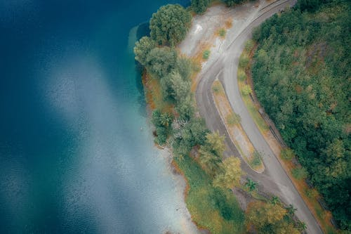 Aerial View Photography of Road Between Trees