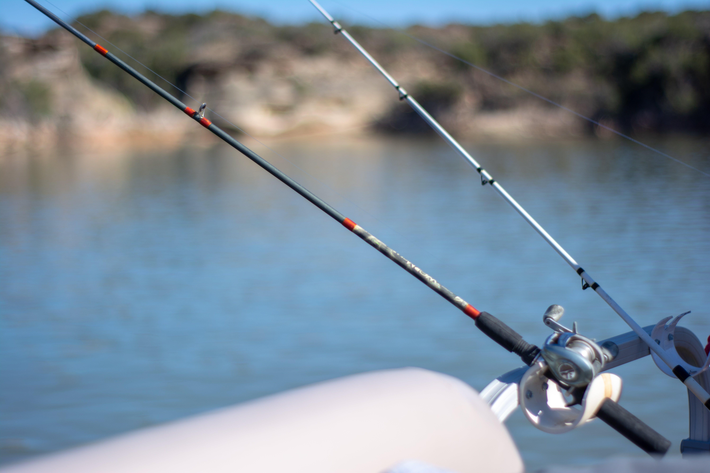 Free stock photo of blue water, boat, fish, fishing