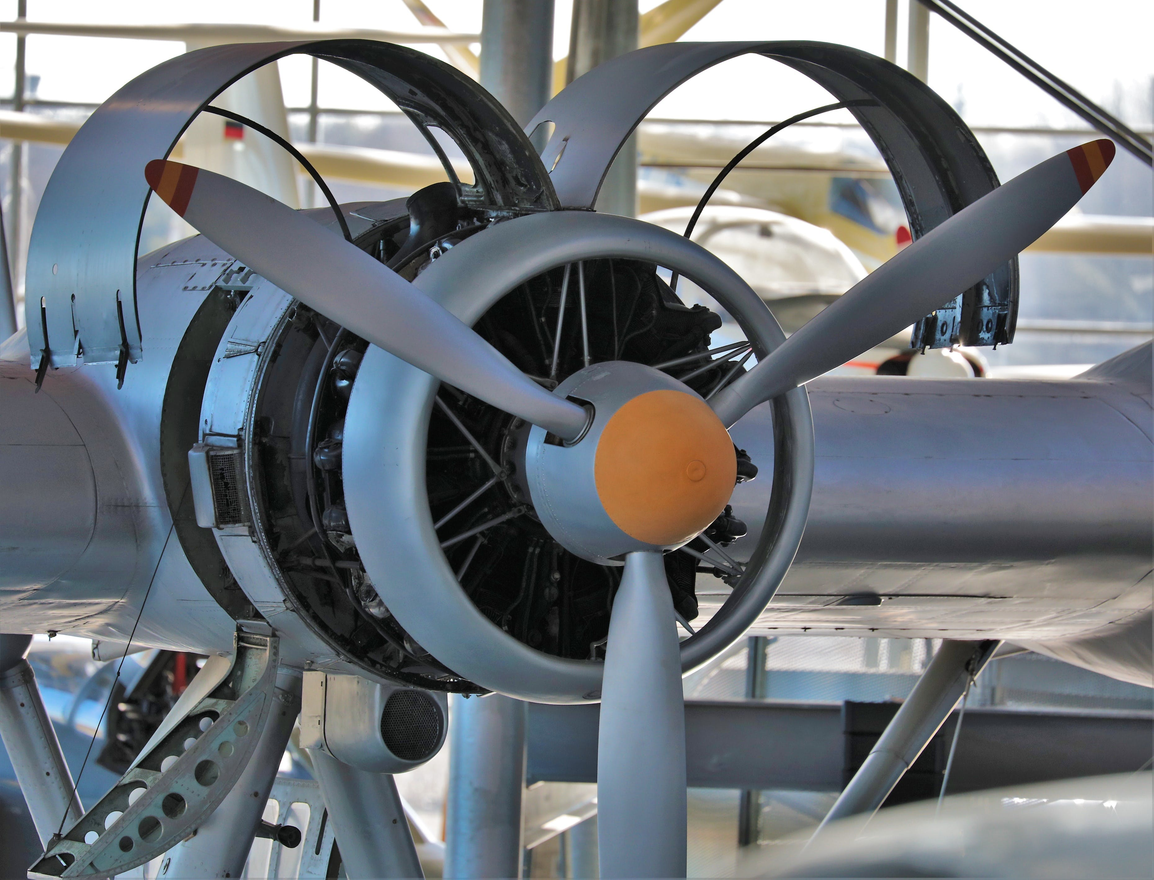 Free stock photo of aircraft propellers, engine, propeller plane