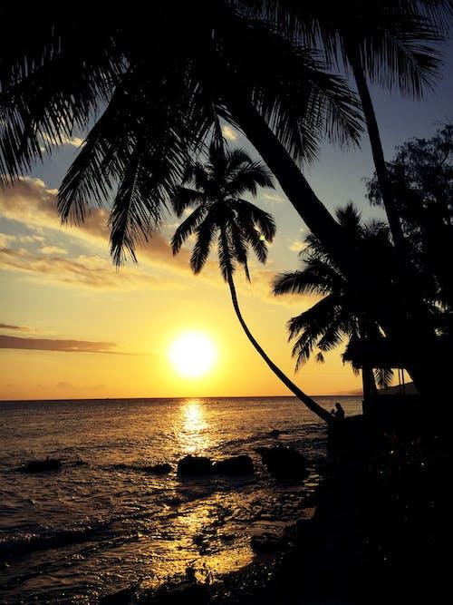 Gratis lagerfoto af aften, hav, havudsigt, kyst