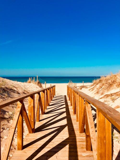 Безкоштовне стокове фото на тему «безтурботний, берег моря, вода, дерев'яний»