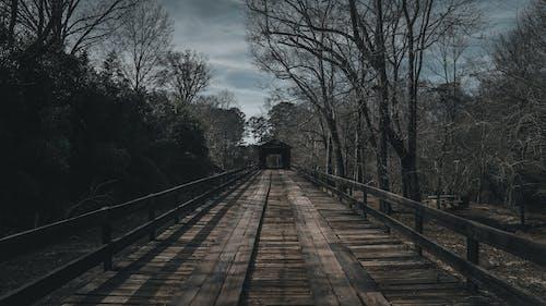 คลังภาพถ่ายฟรี ของ ปิดสะพาน, มืด, รู้สึก, วอลล์เปเปอร์ 4k