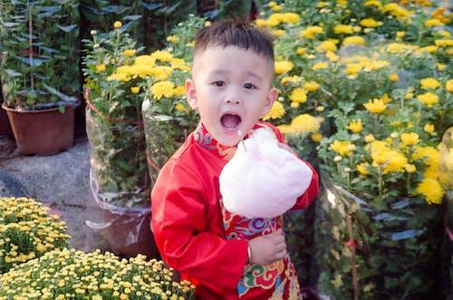 Darmowe zdjęcie z galerii z azjatyckie dziecko, dzieci, dzieciństwo, dziecko