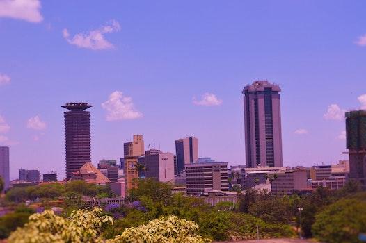 Free stock photo of city, skyline, Nairobi