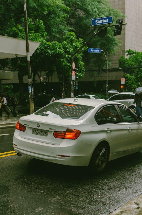 Foto stok gratis hari hujan, jalan, jalan yang sibuk