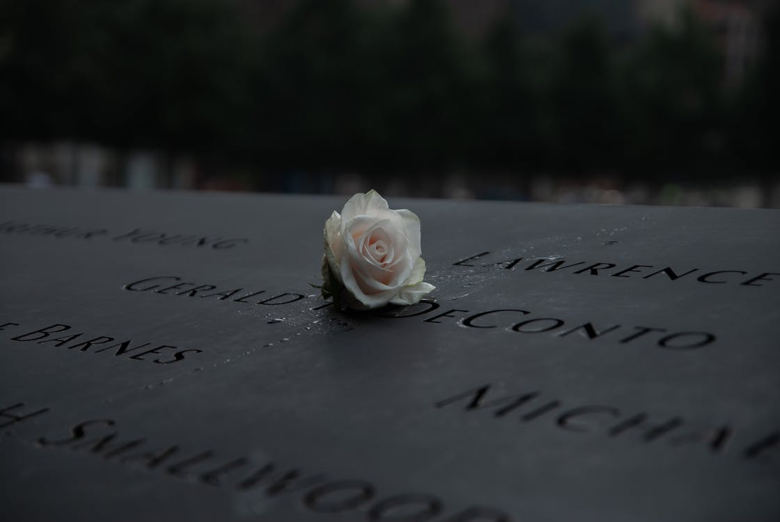 White Rose on 9/11 Memorial