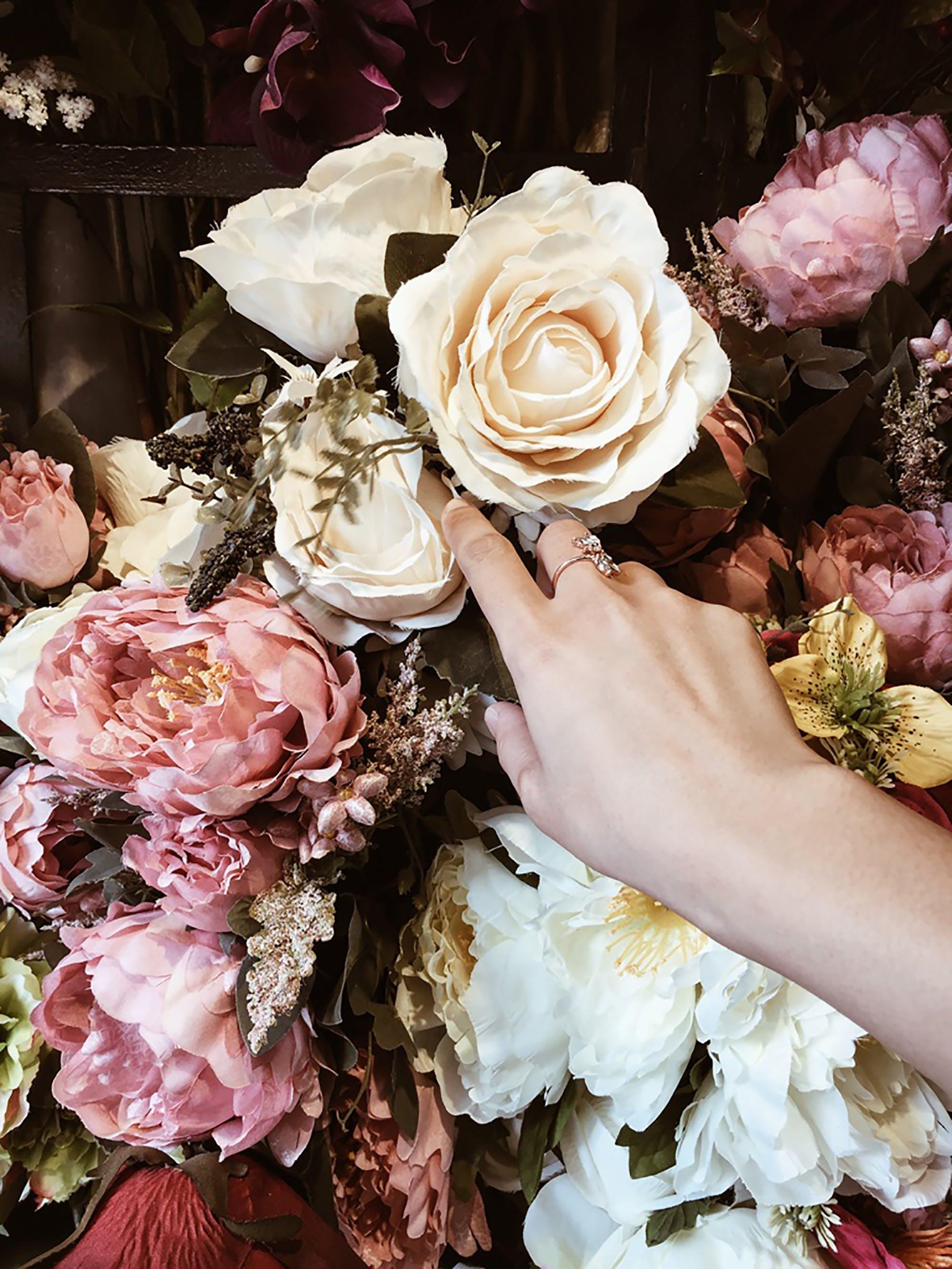 Free stock photo of beautiful, beautiful flowers, flower, girl
