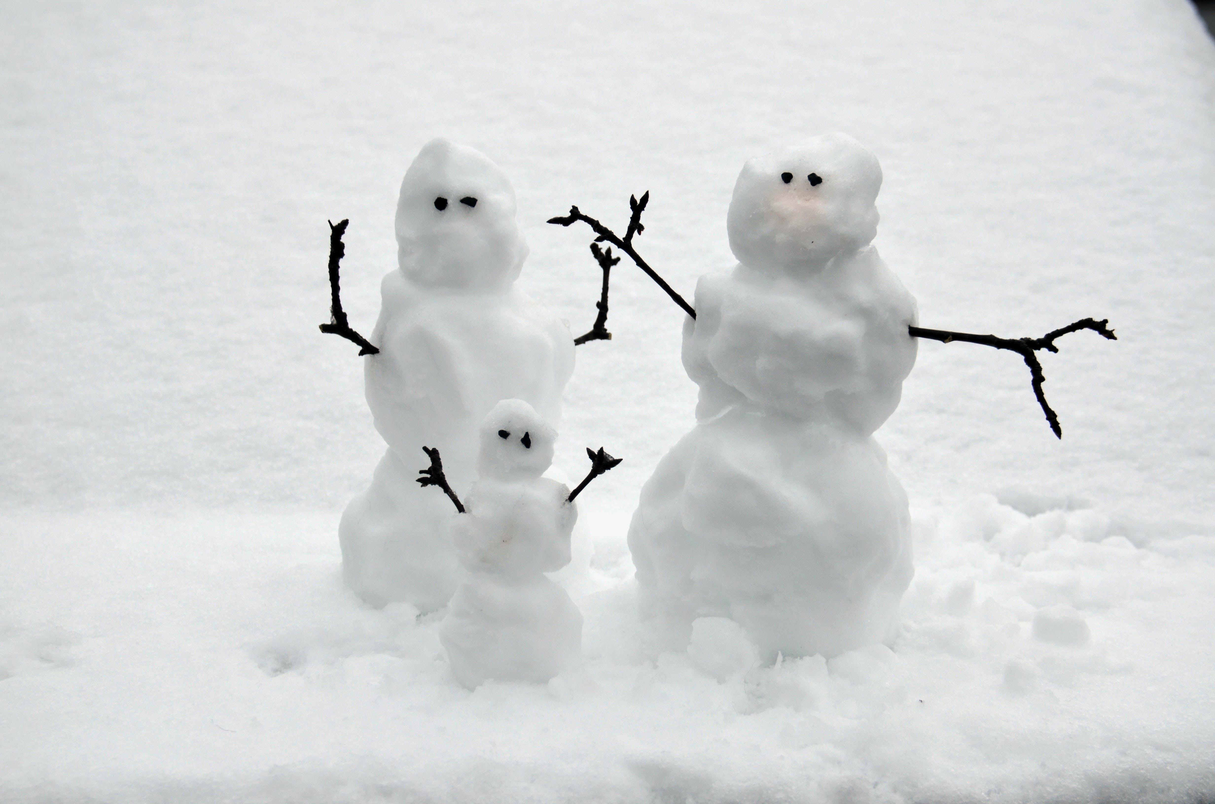 Free stock photo of snow, winter, snowman, snowmen