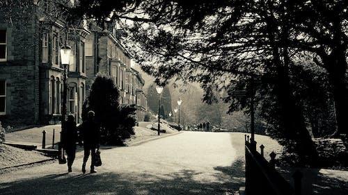 Ảnh lưu trữ miễn phí về cặp vợ chồng đi bộ, cây, người đi bộ, nhà cửa
