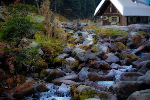 克什米爾, 冬季, 天性, 岩石 的 免費圖庫相片