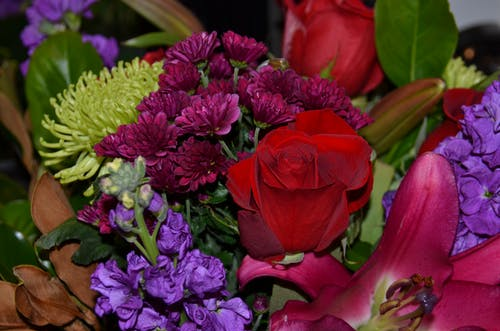 Free stock photo of beautiful bouquet, flowers, red rose