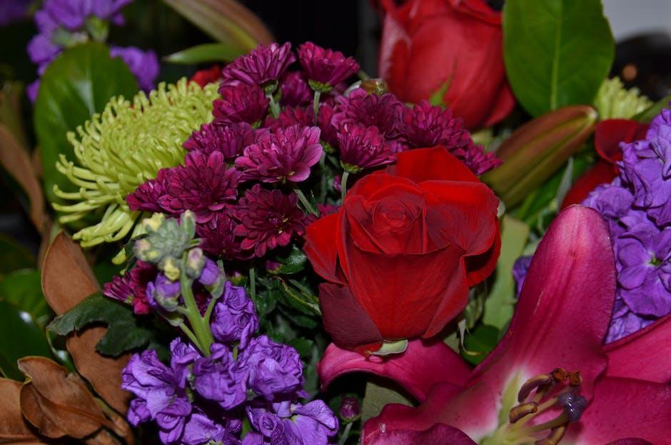 Foto Stok Gratis Tentang Bunga Bunga Karangan Bunga Yang Indah Kembang