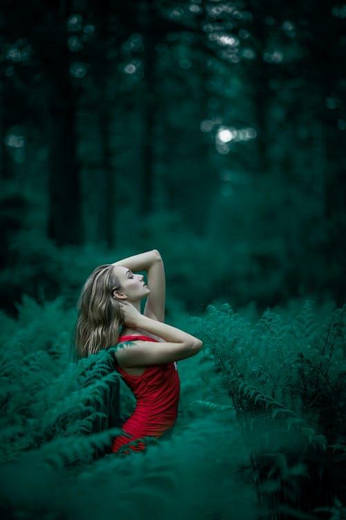 blondine, bomen, Bos