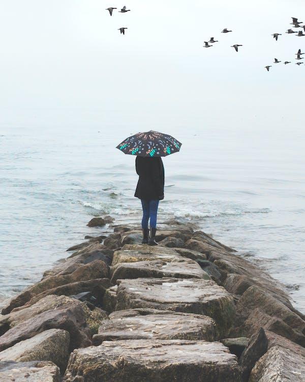 deštník, hejno ptáků, kameny