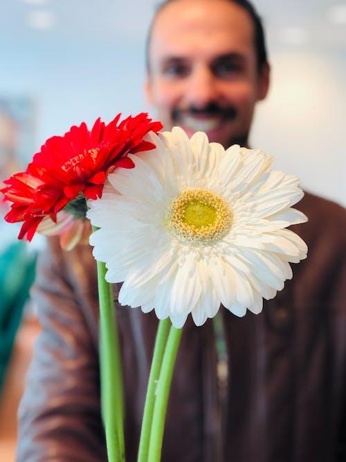 Ingyenes stockfotó a szerelem az szerelem, boldogság, fiúbarát, gyönyörű virág témában