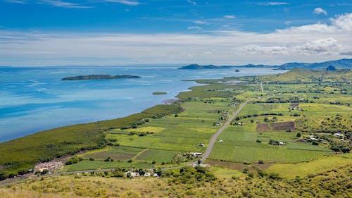 Free stock photo of beauty in nature, evergreen, fiji, highway
