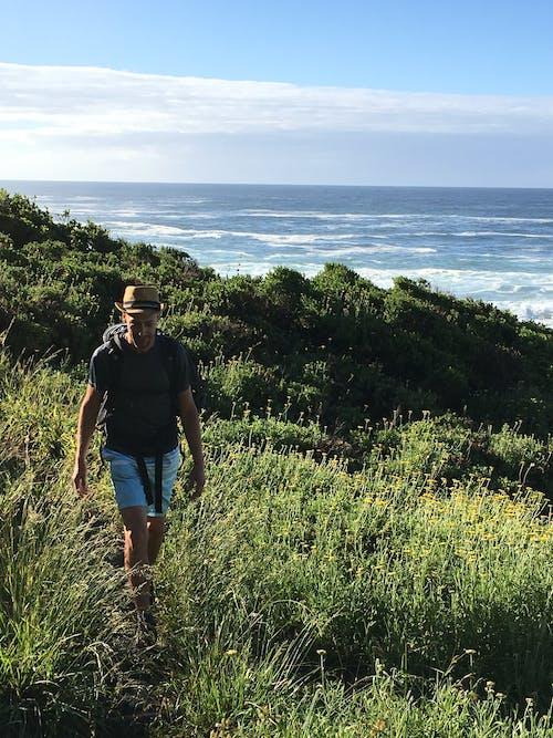 Foto stok gratis afrika selatan, hiker, jejak berang-berang, lautan