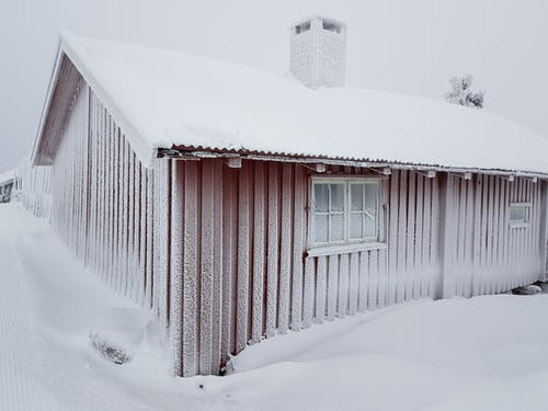 Безкоштовне стокове фото на тему «wnter, грудень, заморожений»