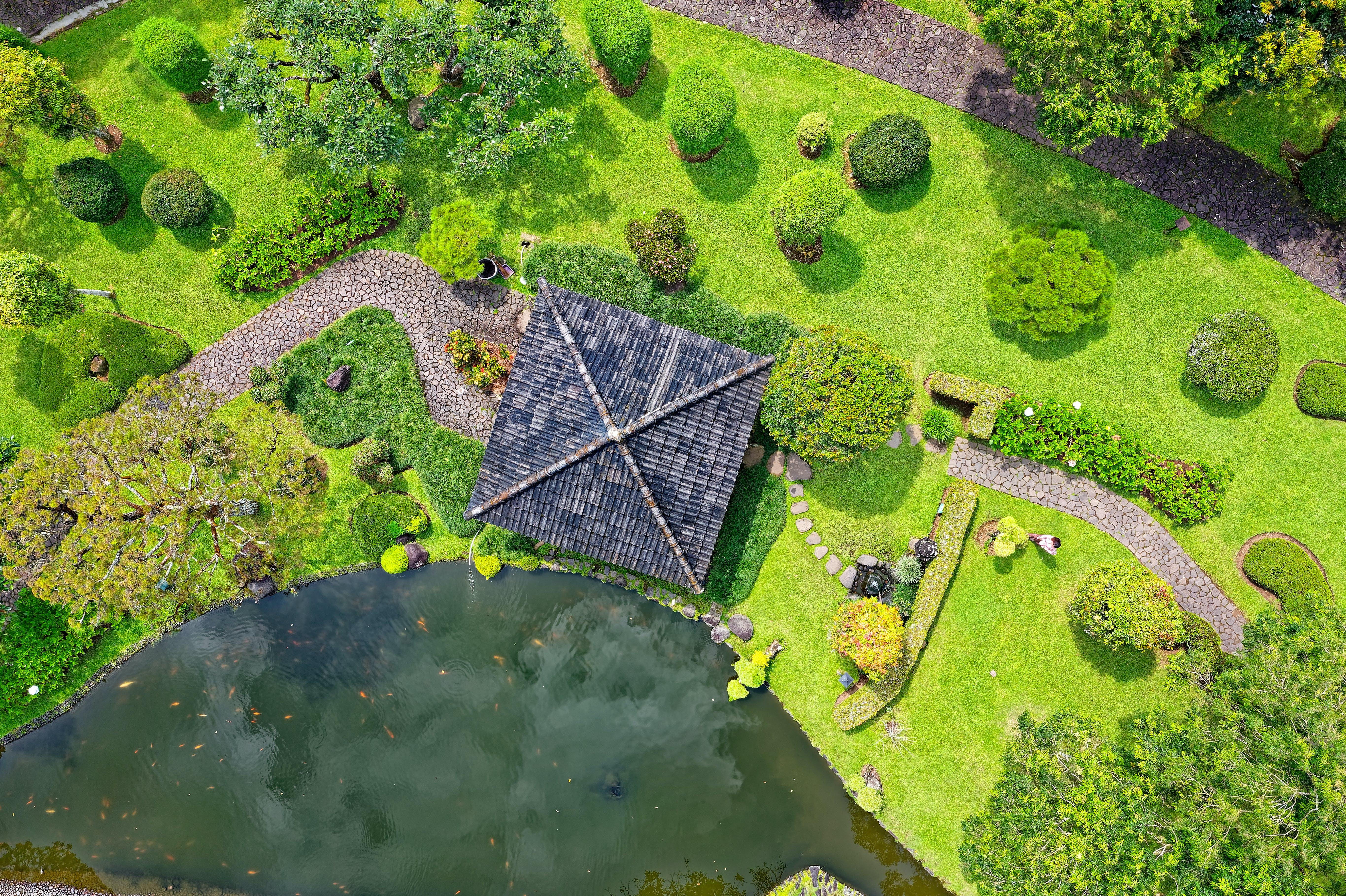 Kostenloses Stock Foto zu architektur, aufsicht, bäume, dach
