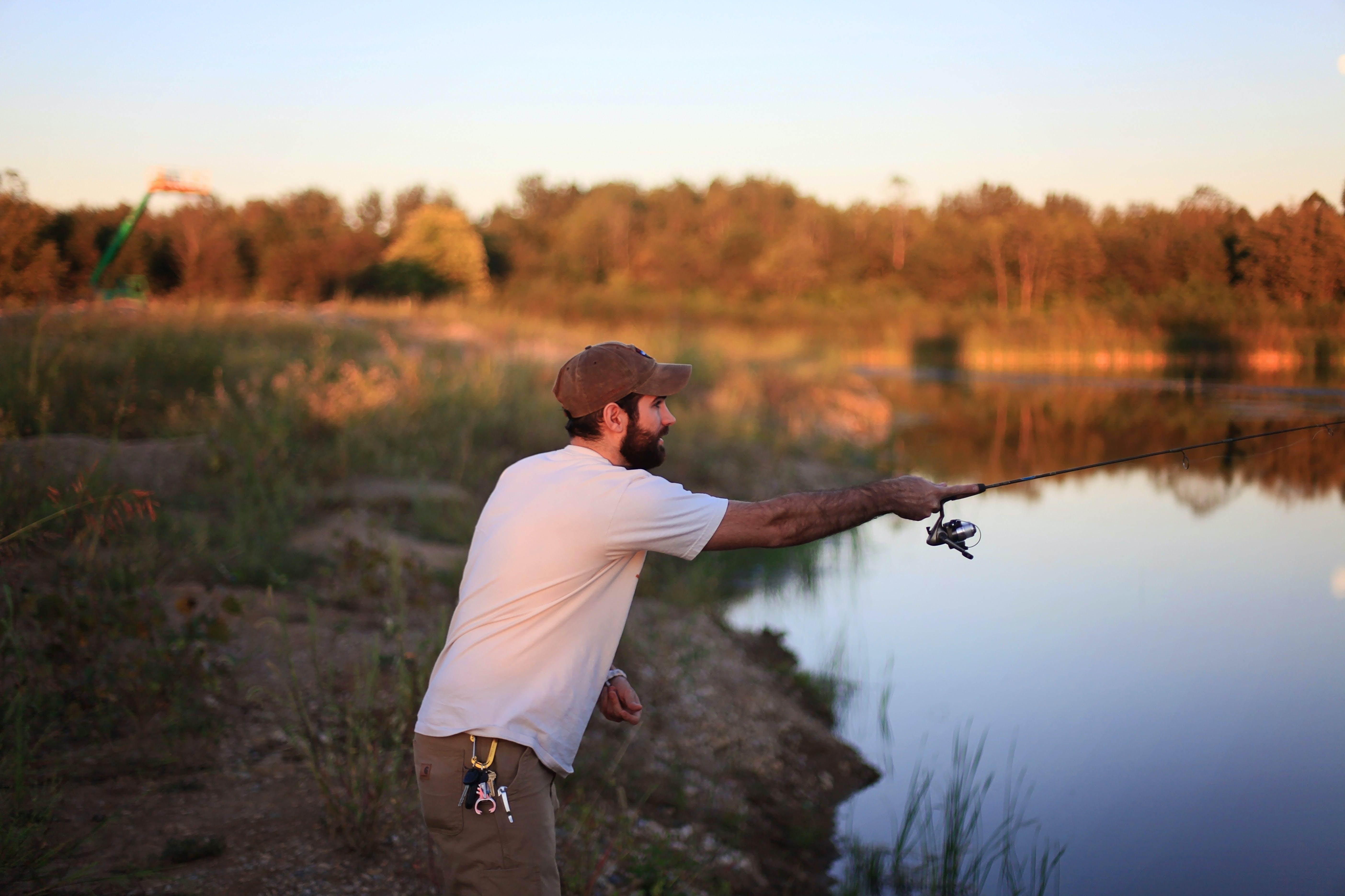 dagslys, fiskeri, græs