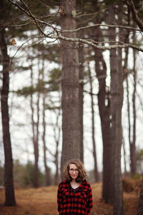 ağaçlar, aşındırmak, bulanıklık, çevre içeren Ücretsiz stok fotoğraf