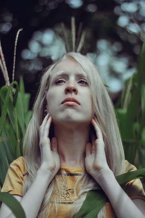 Бесплатное стоковое фото с альбинос, листва, осенние цвета, портрет