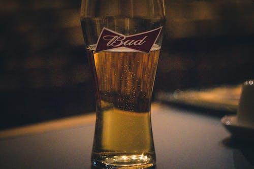 Darmowe zdjęcie z galerii z alkohol, bar, drink, piwo