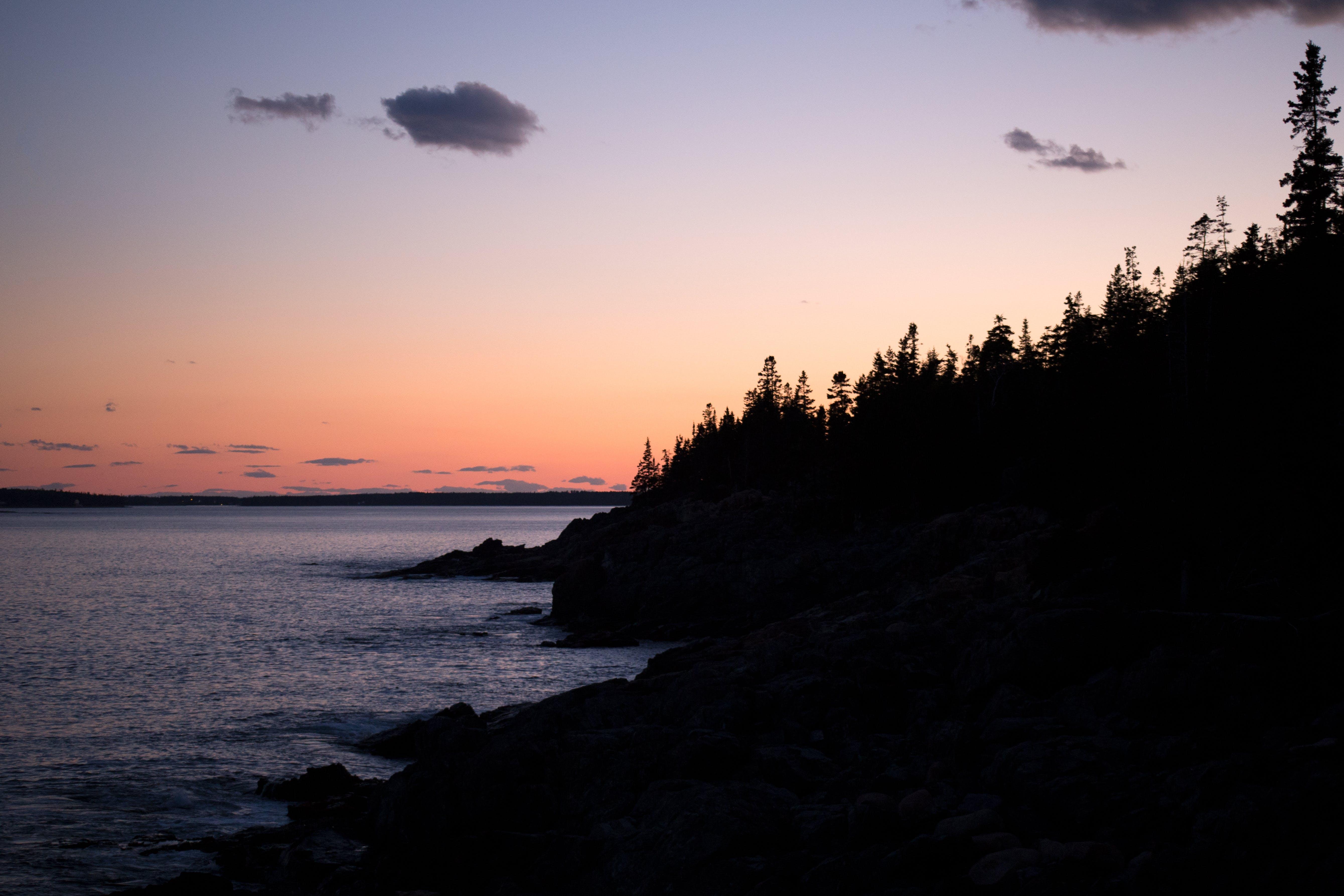 คลังภาพถ่ายฟรี ของ ชายทะเล, ชายหาด, ตะวันลับฟ้า, ต้นไม้