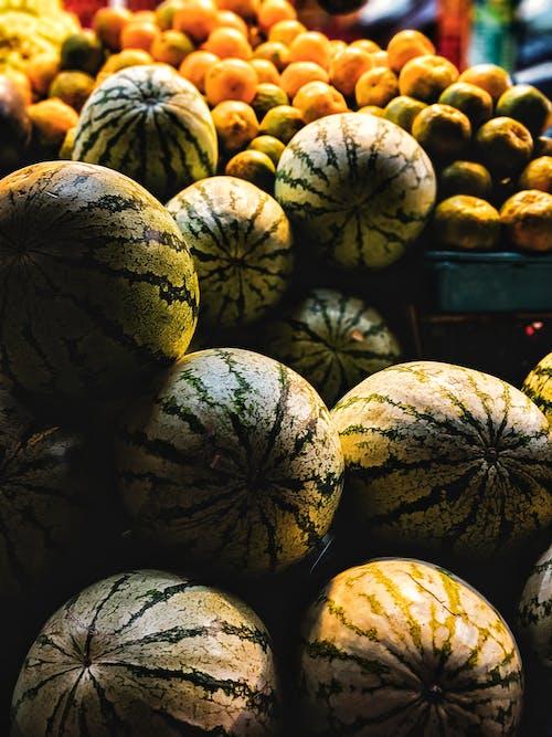 Fotobanka sbezplatnými fotkami na tému ovocie, vodné melóny, vodný melón