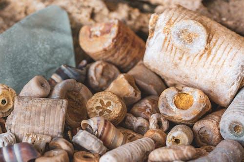 Darmowe zdjęcie z galerii z fotografia makro, makro, skamieniałości, szkło morskie