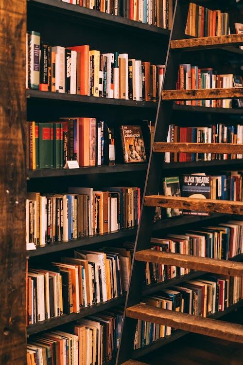 Photos gratuites de bibliothèque, bibliothèques, échelle, étagères