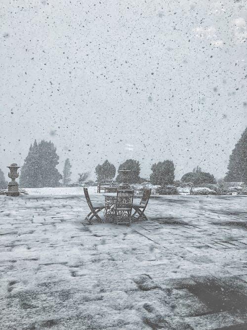 Foto stok gratis alam, beku, cuaca, cuaca dingin